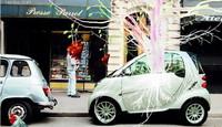 Smart y el transporte sostenible a través del arte