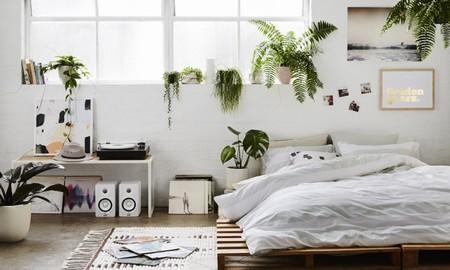 Once ideas para llenar de plantas un dormitorio y darle un toque orgánico personalizado
