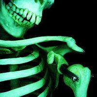 El IDU encuentra en Bogotá ocho esqueletos pertenecientes a la época precolombina