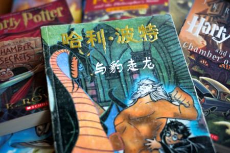 Lo de las copias chinas de Harry Potter es un melón que vale la pena abrir