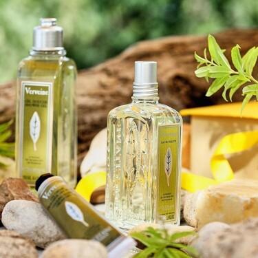 Siete colonias y Eau de Toilettes frescas ideales para cuando suben las temperaturas y no quieres llevar perfume