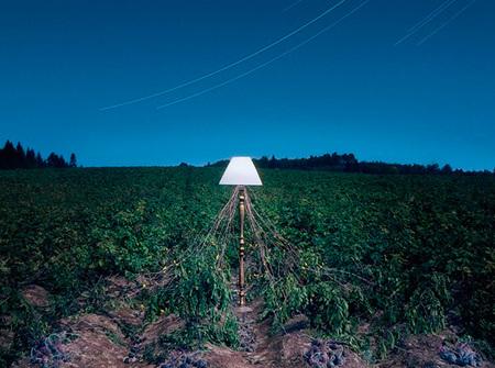 Patatas,ciencia y fotografía: ¿Qué tienen en común?