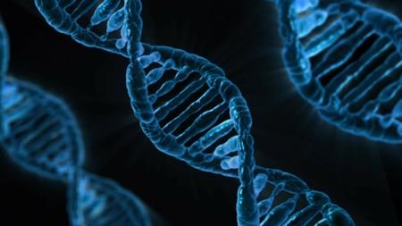 Un nuevo marcador genético puede ayudar a diagnosticar tempranamente el cáncer de próstata