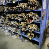 Ya hay más tigres viviendo en cautividad que de forma silvestre
