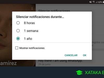 Cómo silenciar WhatsApp: conversaciones, grupos y contactos