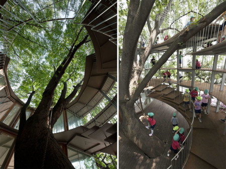 Kindergarten Around Tree Zelkova Fuji Tezuka Architects 32