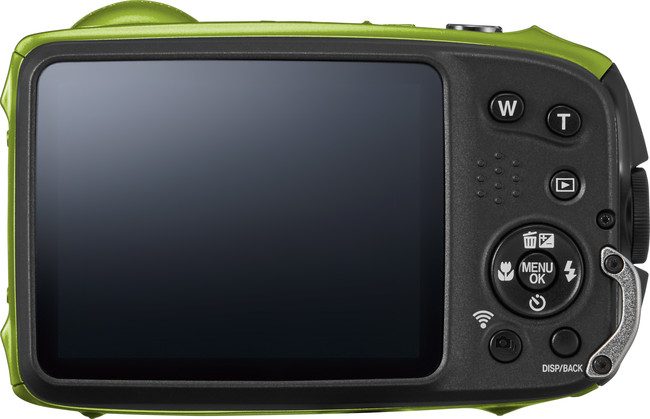 Xp120 Back Green