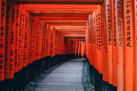 El Campo De Pruebas A Gran Escala De La Renta Basica Esta Inevitablemente En Japon 13