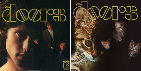 The Kitten Covers 24