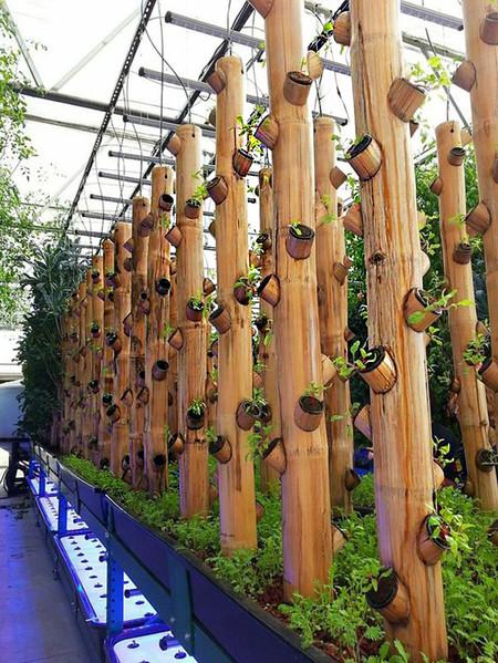 Exterior Bambu 4