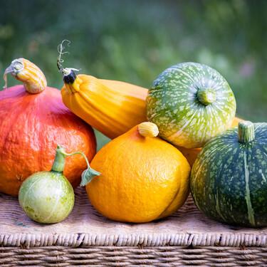 La calabaza de temporada y sus tipos: características, propiedades y cómo cocinar la hortaliza reina del otoño