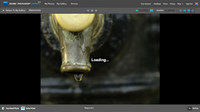 Adobe Photoshop Express actualiza su versión beta con algunas mejoras
