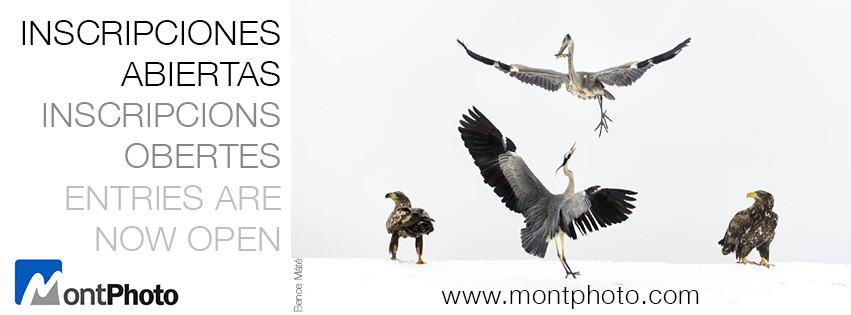 Concurso Montphoto 2017