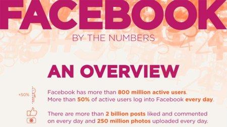 Los números de Facebook, la infografía de la semana