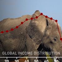 Lo que no te han contado del Elefante de Milanovic