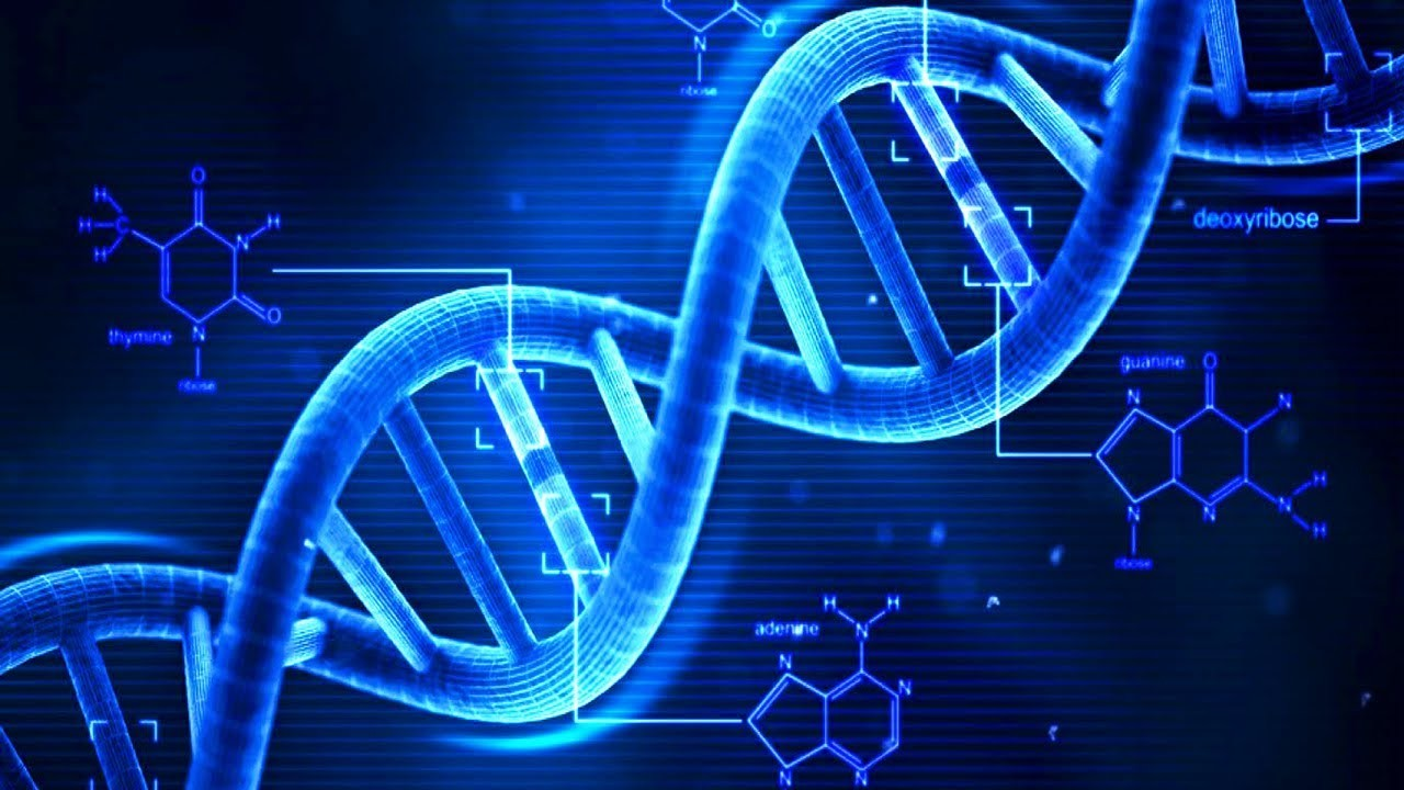 Estos nano-robots de ADN están a punto de revolucionar la quimioterapia: son capaces de detectar y eliminar tumores en pocas horas