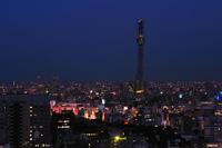 Culminó la construcción de la Tokyo Sky Tree