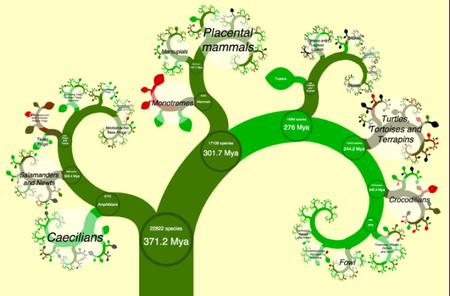 Un árbol De La Vida Interactivo