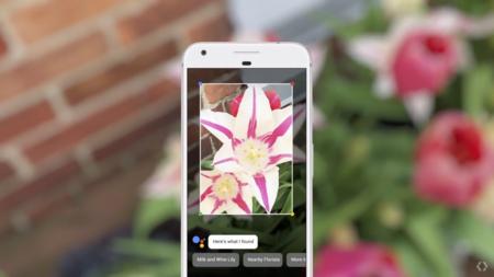 Google Lens: ahora podremos reconocer lo que tenemos al frente con la cámara de Android
