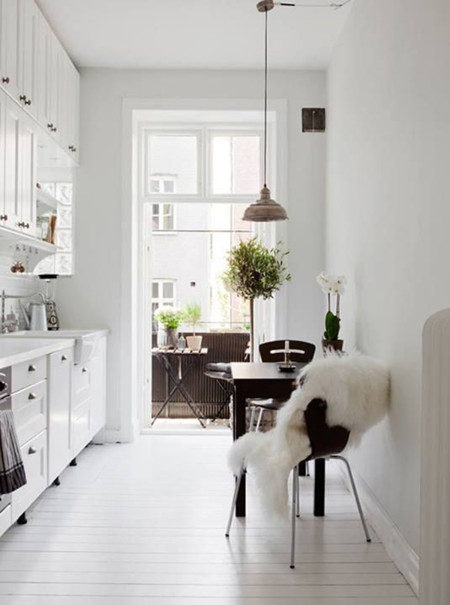 White Scandinavian Kitchens