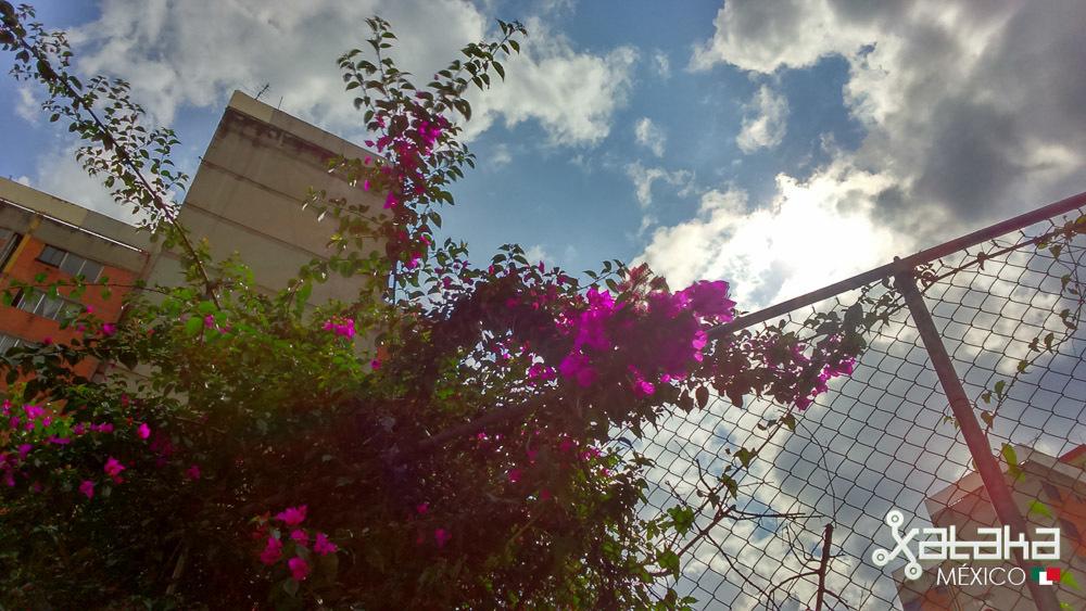 Foto de Fotografías con Sony Xperia T3 (2/14)