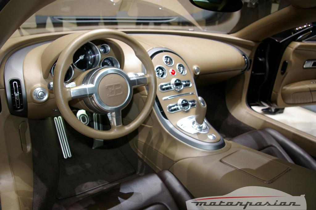 Foto de Bugatti Veyron Hermès en el Salón de Ginebra (24/24)