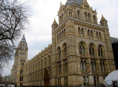 Museo Historia Natural London