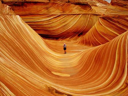 Wave Tourist