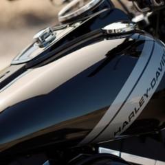Foto 14 de 24 de la galería harley-davidson-fxdf-fat-bob-2014 en Motorpasion Moto