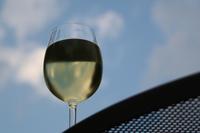 España supera a Francia exportando vino