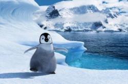 Oscar 2007: Mejor película de animación para 'Happy Feet'