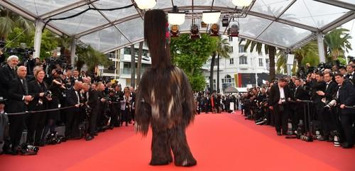 Un paseo por los primeros días del 69 Festival de Cannes