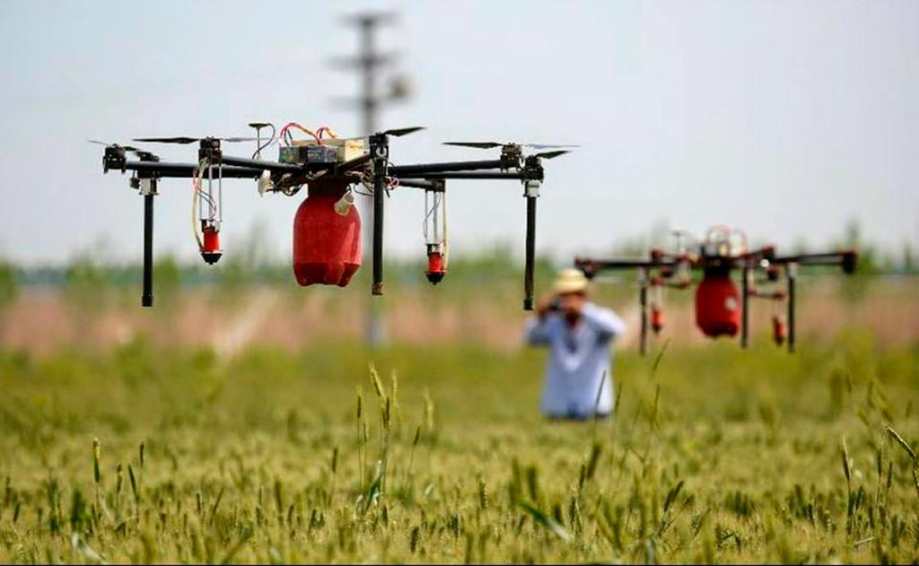 Drones para soltar insectos machos estériles en la frontera: así quiere controlar México las plagas en la...
