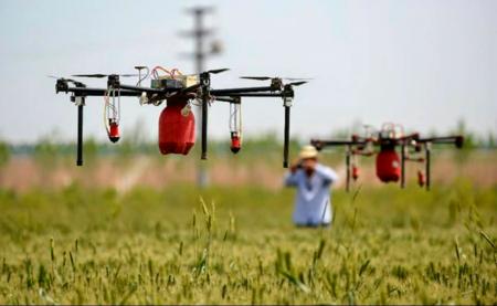 Drones para soltar insectos machos estériles en la frontera: así quiere controlar México las plagas al norte del país