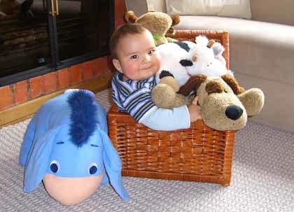 La foto de tu bebé: dentro del cajón de los peluches