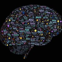 La capacidad de memoria del cerebro humano ha demostrado ser 10 veces mayor