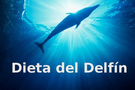 dietadelfin2