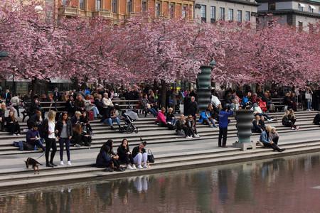 Estocolmo Ciudad Festiva