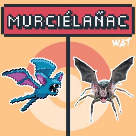 Murcielanac