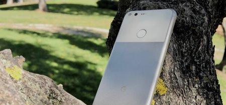 Google estaría trabajando en tres smartphones: a los dos Pixel se suma un modelo llamado 'Taimen'
