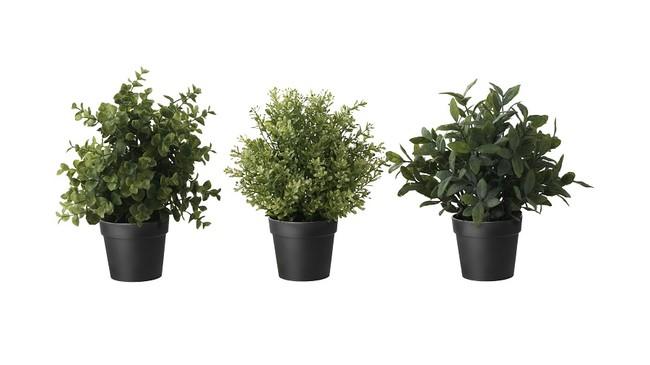 Ikea Planta Fejka