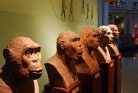 El Museo de Historia de Hanoi