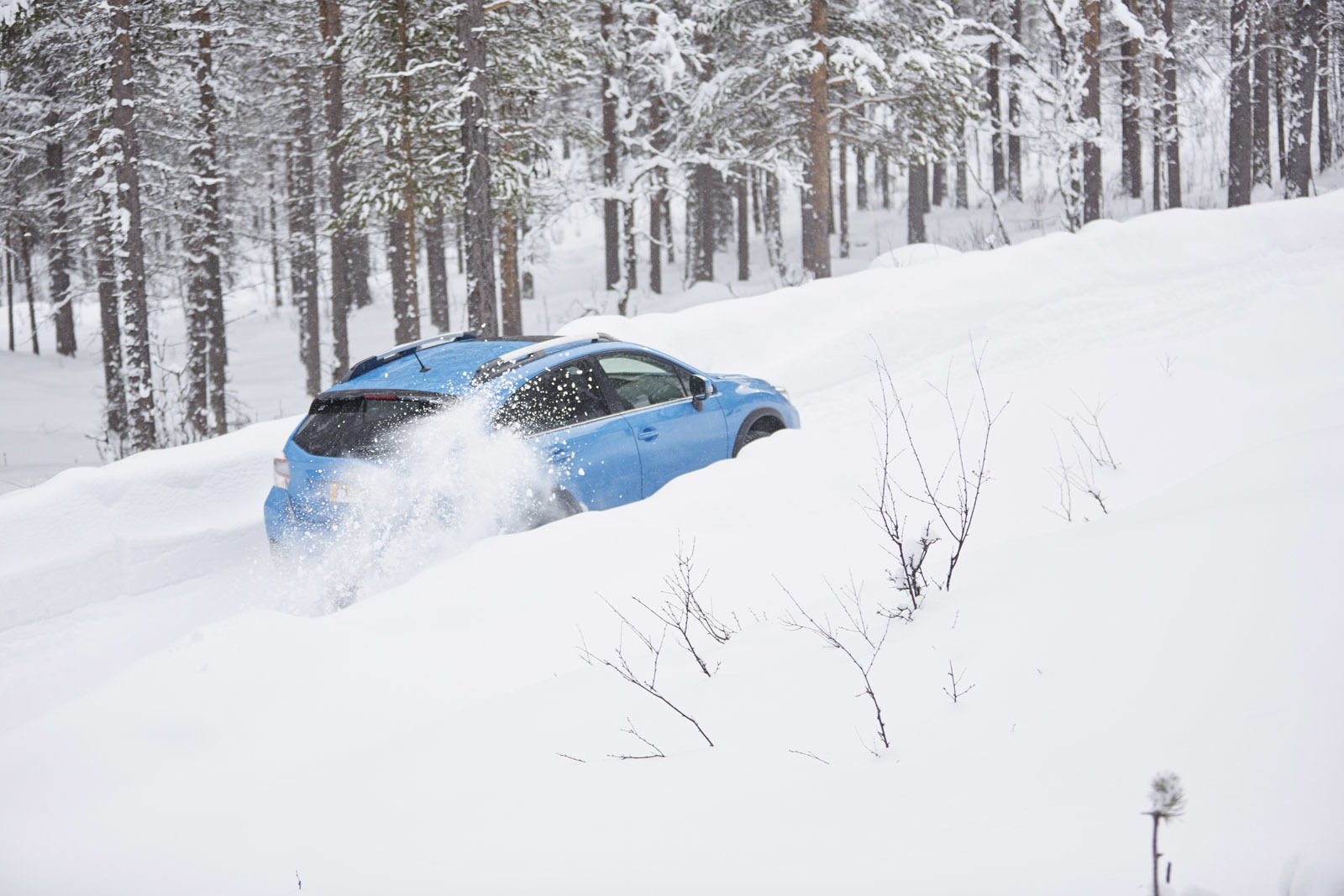 Foto de Subaru Snow Drive 2016 (119/137)