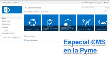 Cinco complementos para mejorar SharePoint: Especial CMS en la Pyme