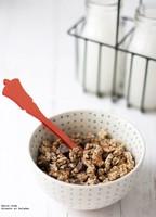 Cómo hacer cereales con chocolate para el desayuno. Receta