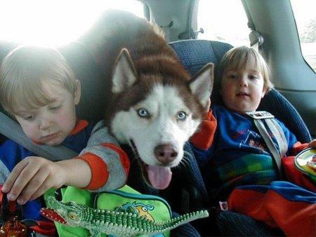 Viajar con niños en un coche híbrido