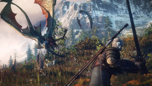 The Witcher 3 Wild Hunt 8
