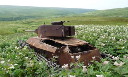 Tanques Naturaleza 10