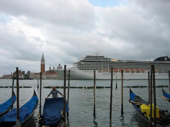 Venecia Viola