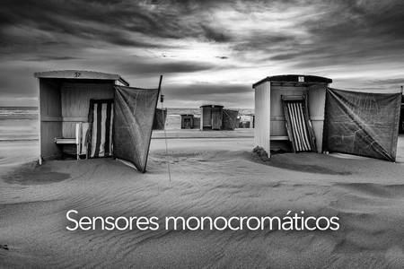 Todo sobre fotografía móvil (7): los sensores en blanco y negro, qué son y para qué sirven